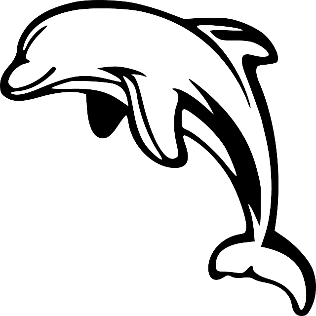 Dibujos de delfines  DELFINPEDIA