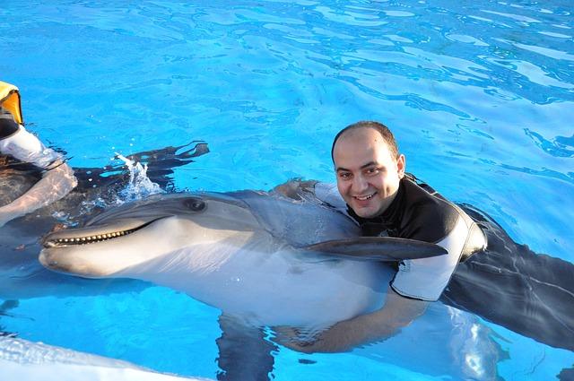 nadar-delfin